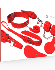 91D-221773 - SexyPlay.es  Experience bdsm fetish kit serie rojo
